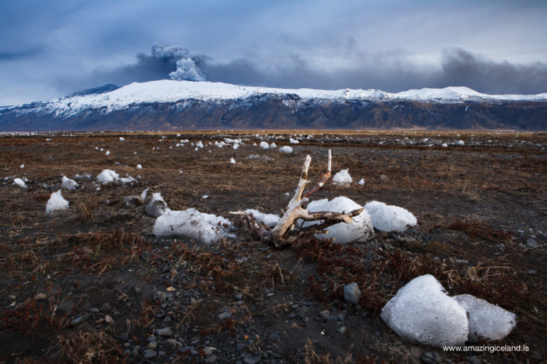Icebergs and tree stubs from the glacial flooding of Eyjafjallajokull volcano eruption in 2010