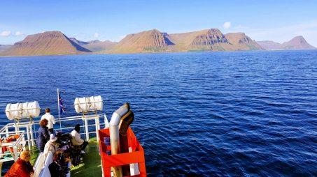 Nature tour in Ísafjarðardjúp bay 006